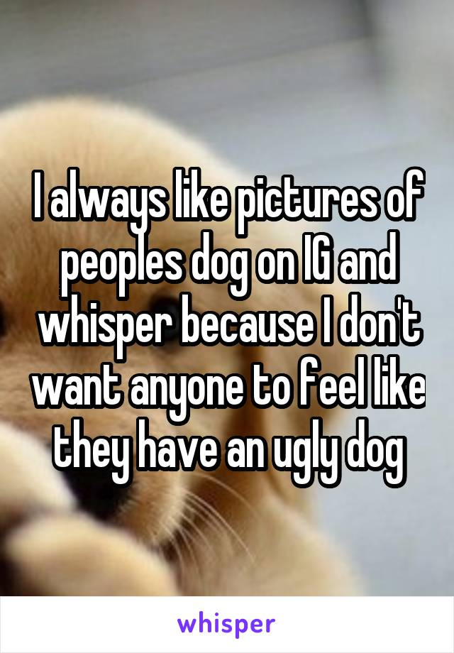 I always like pictures of peoples dog on IG and whisper because I don't want anyone to feel like they have an ugly dog