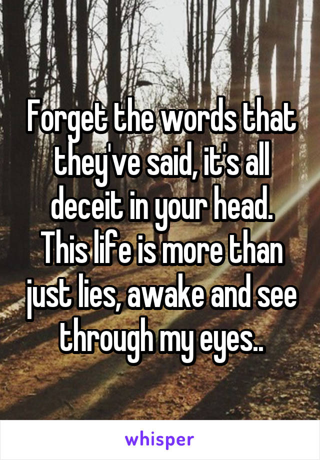 Forget the words that they've said, it's all deceit in your head. This life is more than just lies, awake and see through my eyes..