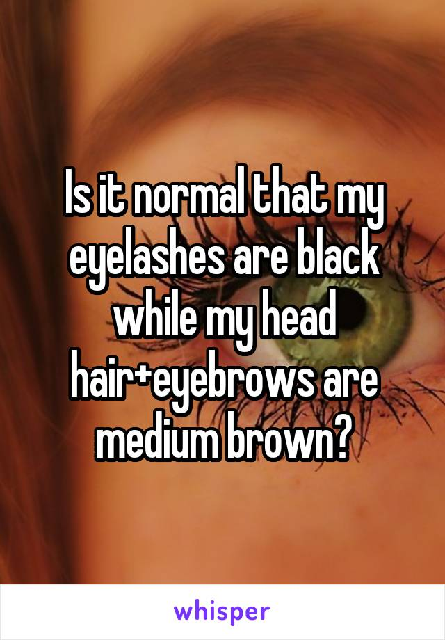 Is it normal that my eyelashes are black while my head hair+eyebrows are medium brown?