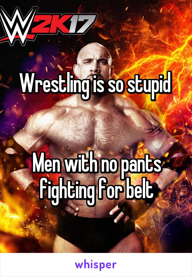 Wrestling is so stupid    Men with no pants fighting for belt