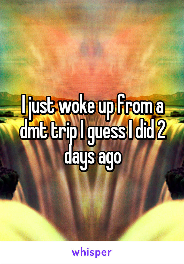 I just woke up from a dmt trip I guess I did 2 days ago