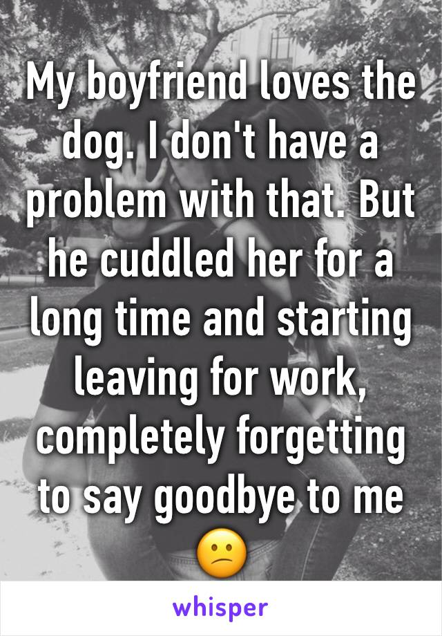 My boyfriend loves the dog. I don't have a problem with that. But he cuddled her for a long time and starting leaving for work, completely forgetting to say goodbye to me 😕