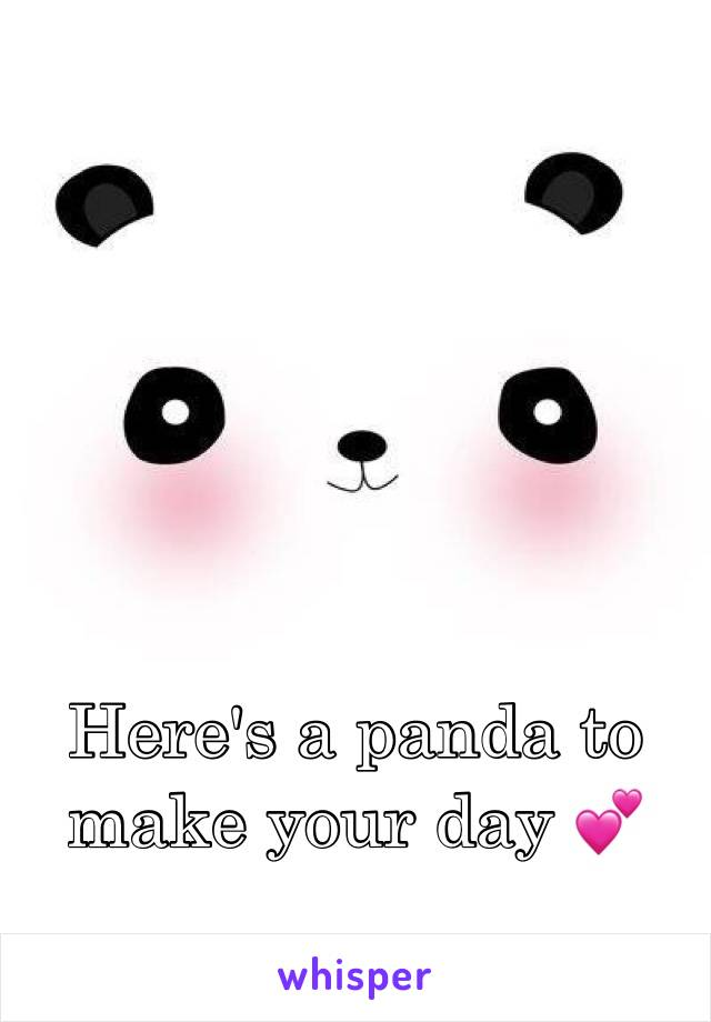 Here's a panda to make your day 💕