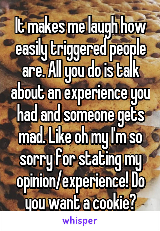 It makes me laugh how easily triggered people are. All you do is talk about an experience you had and someone gets mad. Like oh my I'm so sorry for stating my opinion/experience! Do you want a cookie?