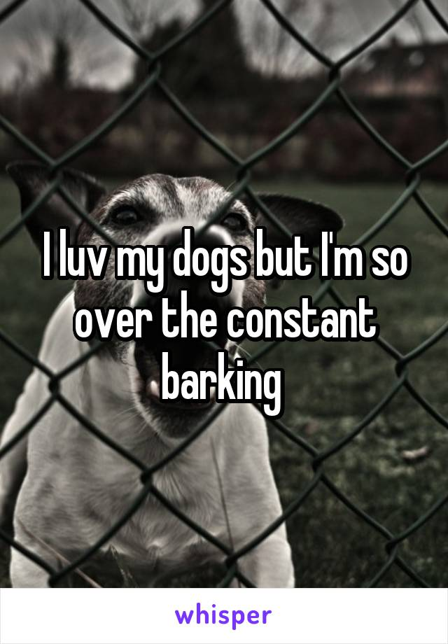 I luv my dogs but I'm so over the constant barking