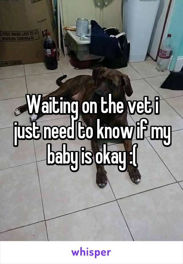 Waiting on the vet i just need to know if my baby is okay :(