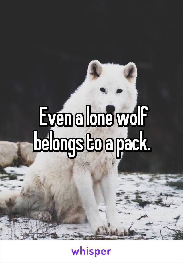 Even a lone wolf belongs to a pack.