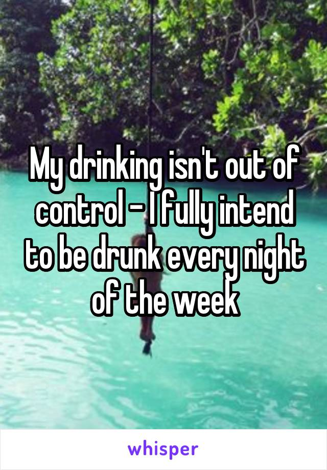 My drinking isn't out of control - I fully intend to be drunk every night of the week