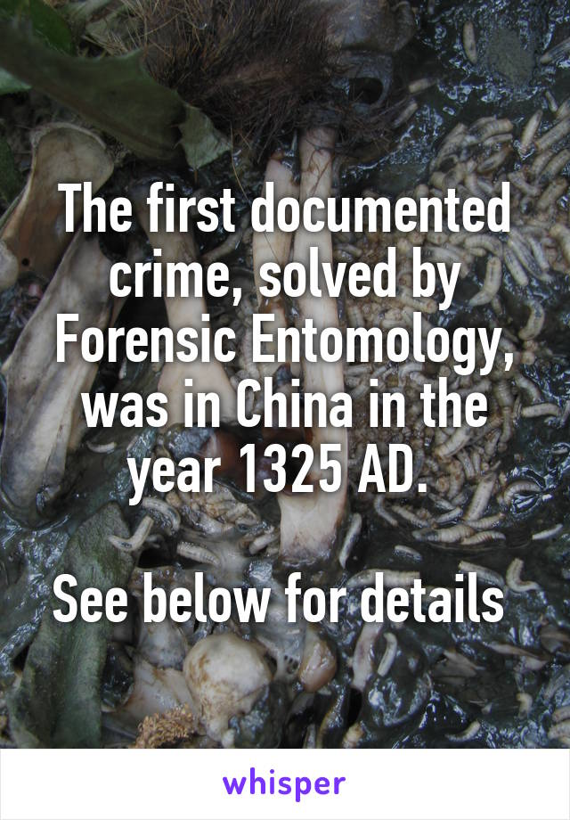 The first documented crime, solved by Forensic Entomology, was in China in the year 1325 AD.   See below for details
