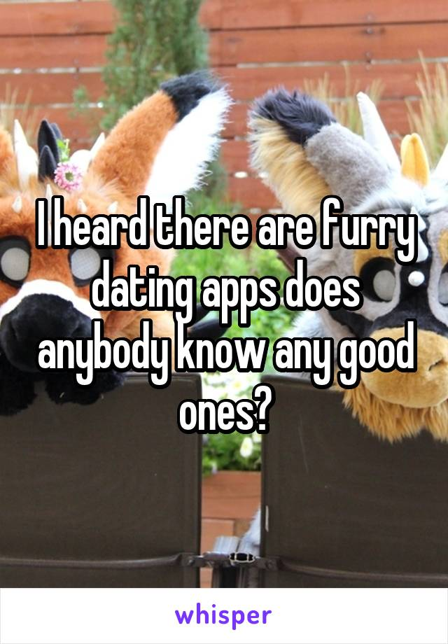 I heard there are furry dating apps does anybody know any good ones?
