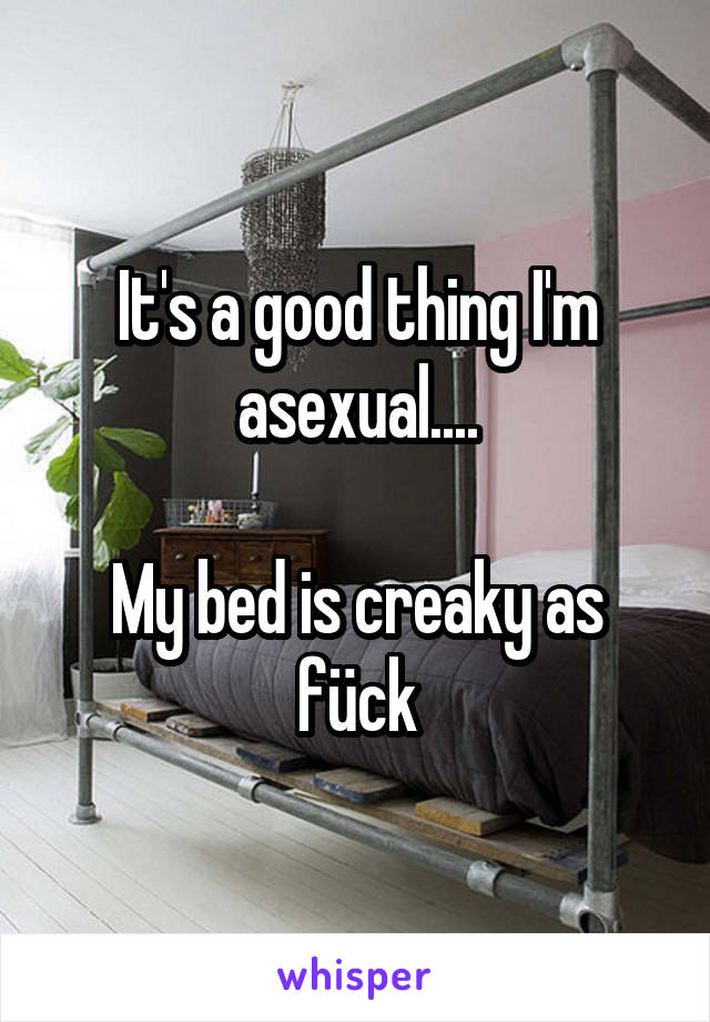 It's a good thing I'm asexual....  My bed is creaky as fück