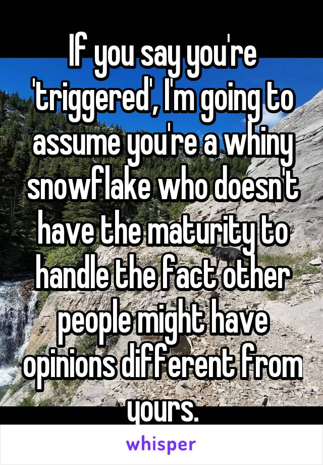If you say you're 'triggered', I'm going to assume you're a whiny snowflake who doesn't have the maturity to handle the fact other people might have opinions different from yours.