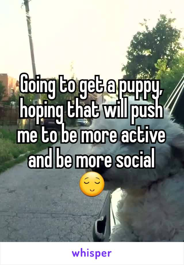 Going to get a puppy, hoping that will push me to be more active and be more social 😌
