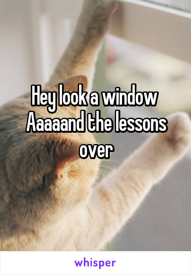 Hey look a window  Aaaaand the lessons over