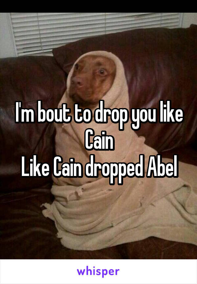 I'm bout to drop you like Cain Like Cain dropped Abel