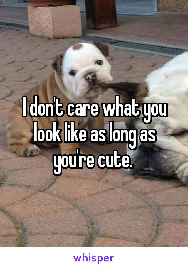 I don't care what you look like as long as you're cute.