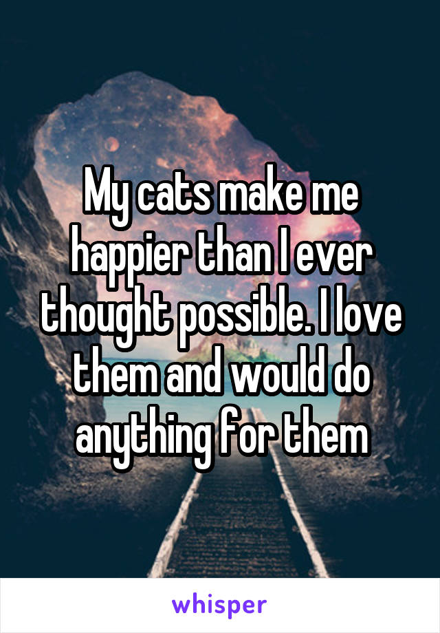 My cats make me happier than I ever thought possible. I love them and would do anything for them