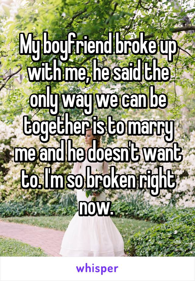 My boyfriend broke up with me, he said the only way we can be together is to marry me and he doesn't want to. I'm so broken right now.