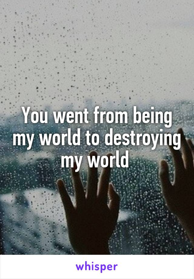 You went from being my world to destroying my world