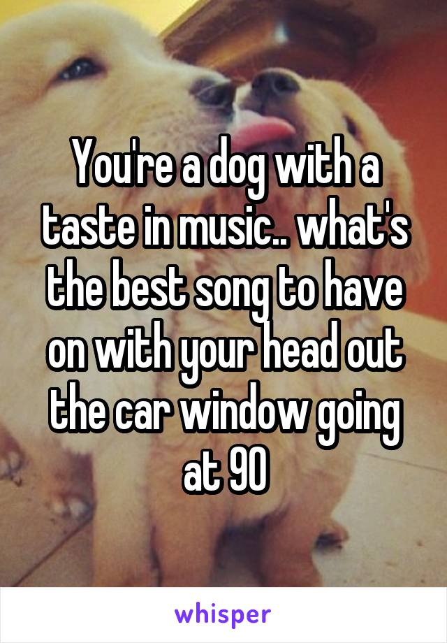 You're a dog with a taste in music.. what's the best song to have on with your head out the car window going at 90
