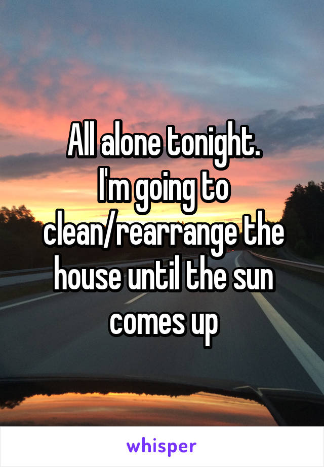 All alone tonight. I'm going to clean/rearrange the house until the sun comes up