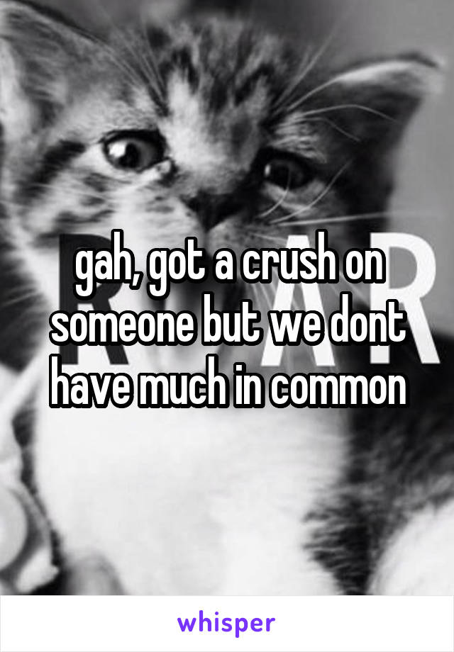 gah, got a crush on someone but we dont have much in common