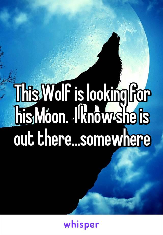 This Wolf is looking for his Moon.  I know she is out there...somewhere