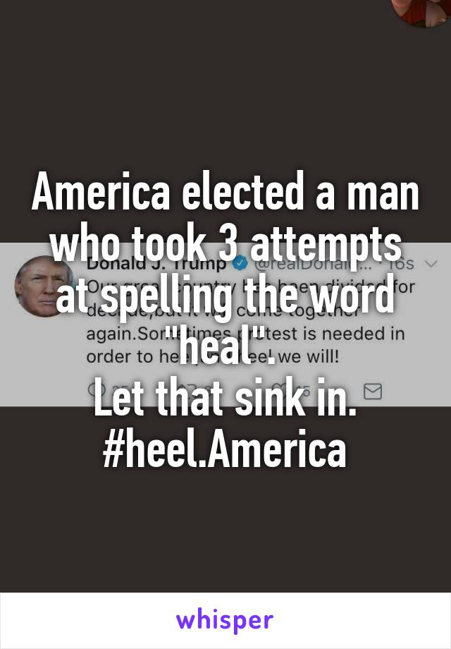 "America elected a man who took 3 attempts at spelling the word ""heal"".  Let that sink in. #heel.America"