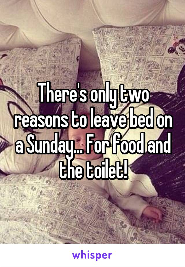 There's only two reasons to leave bed on a Sunday... For food and the toilet!