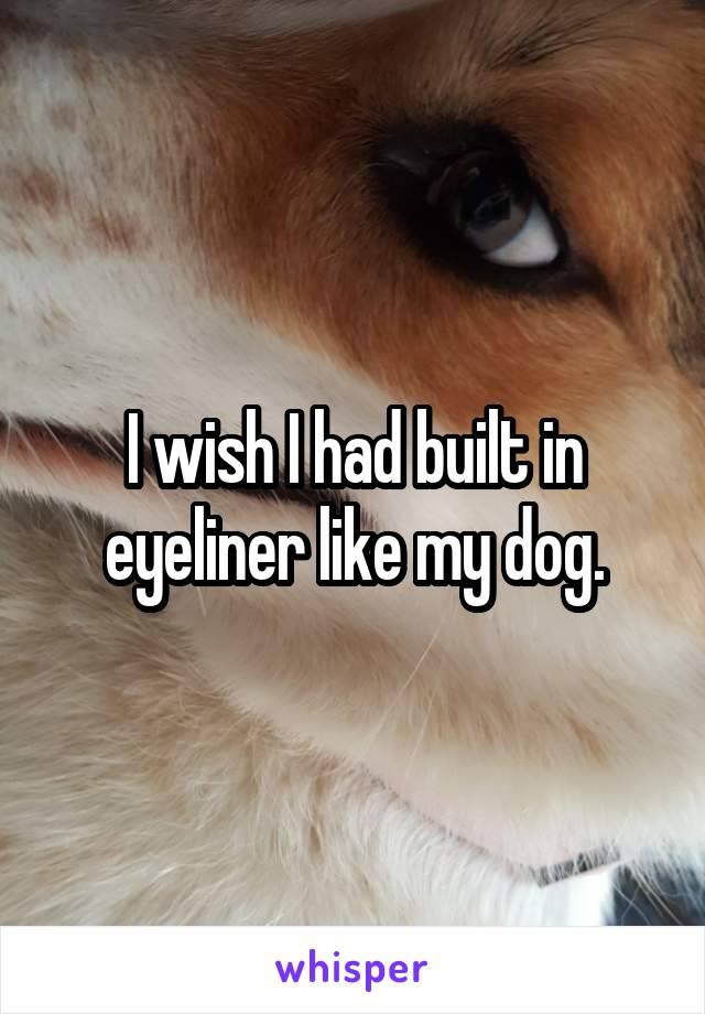 I wish I had built in eyeliner like my dog.