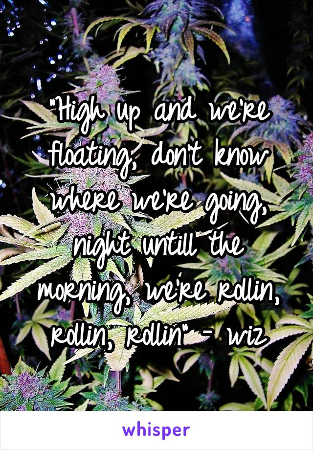 """""""High up and we're floating, don't know where we're going, night untill the morning, we're rollin, rollin, rollin"""" - wiz"""