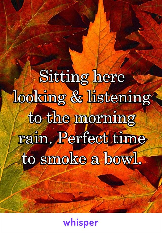 Sitting here looking & listening to the morning rain. Perfect time to smoke a bowl.
