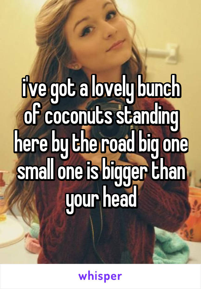 i've got a lovely bunch of coconuts standing here by the road big one small one is bigger than your head