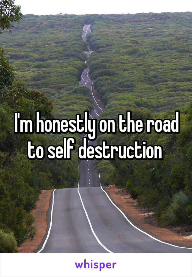 I'm honestly on the road to self destruction