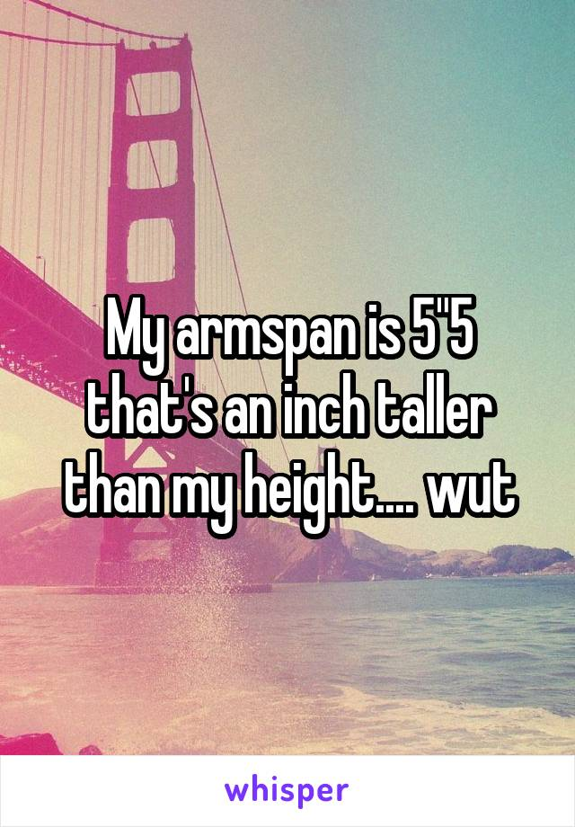 """My armspan is 5""""5 that's an inch taller than my height.... wut"""