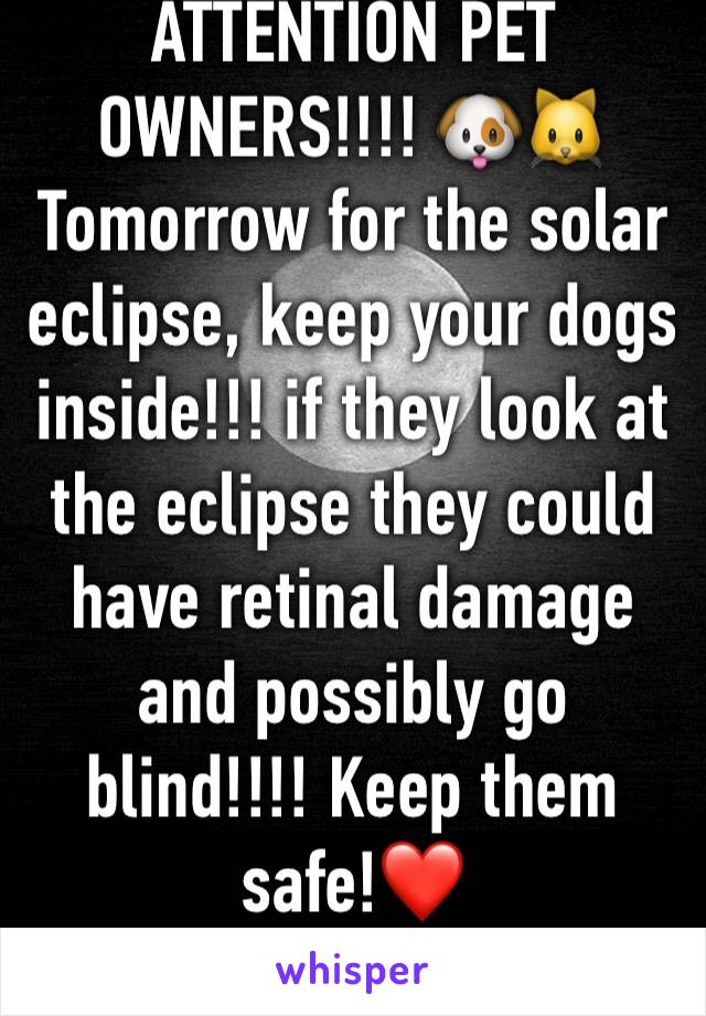ATTENTION PET OWNERS!!!! 🐶🐱Tomorrow for the solar eclipse, keep your dogs inside!!! if they look at the eclipse they could have retinal damage and possibly go blind!!!! Keep them safe!❤️