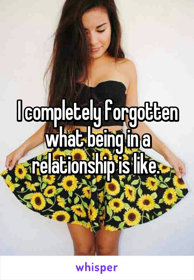 I completely forgotten what being in a relationship is like.
