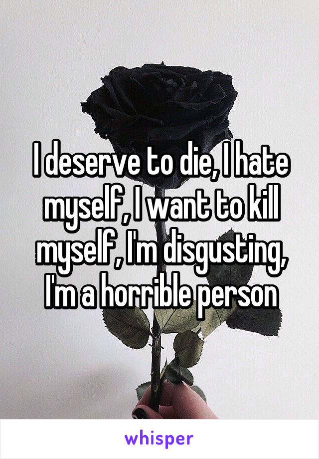 I deserve to die, I hate myself, I want to kill myself, I'm disgusting, I'm a horrible person