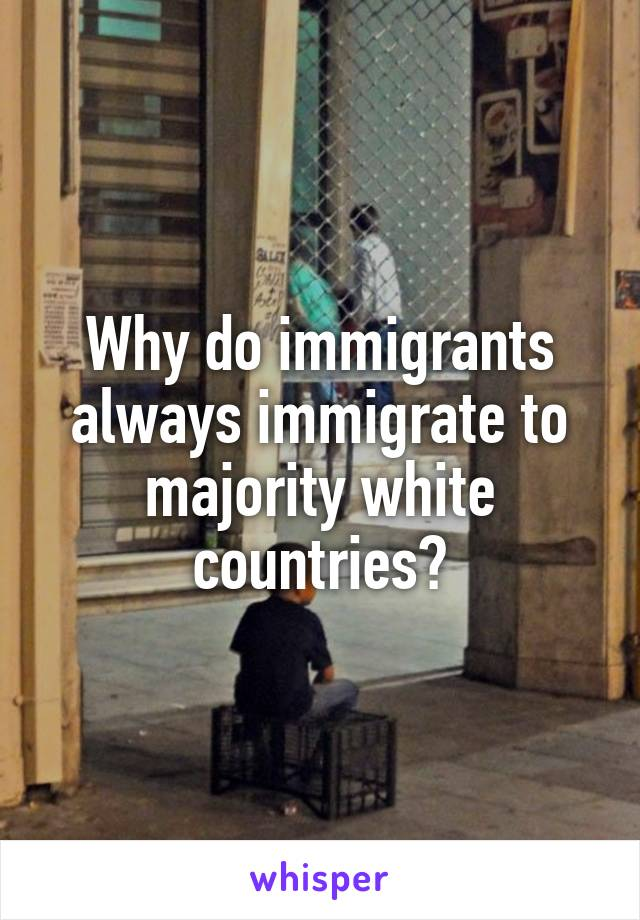 Why do immigrants always immigrate to majority white countries?