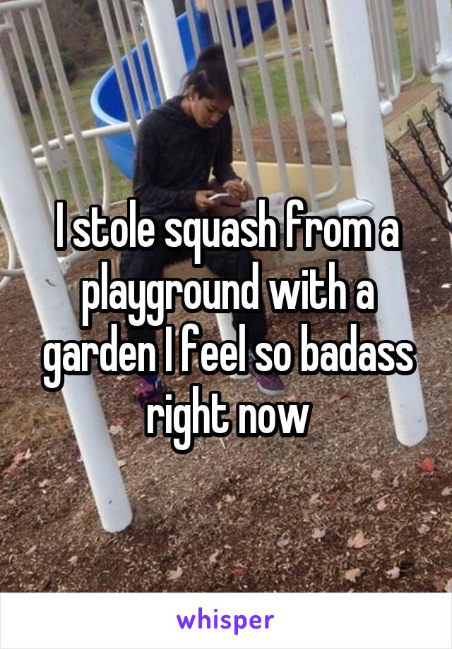I stole squash from a playground with a garden I feel so badass right now