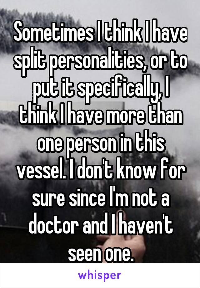 Sometimes I think I have split personalities, or to put it specifically, I think I have more than one person in this vessel. I don't know for sure since I'm not a doctor and I haven't seen one.