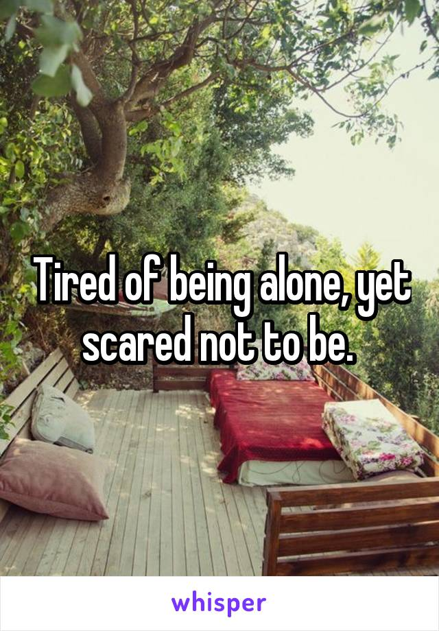 Tired of being alone, yet scared not to be.