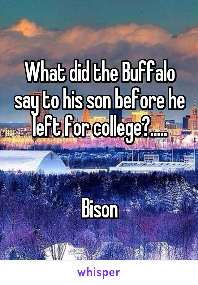 What did the Buffalo say to his son before he left for college?.....   Bison