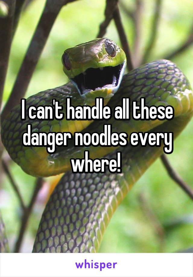 I can't handle all these danger noodles every where!