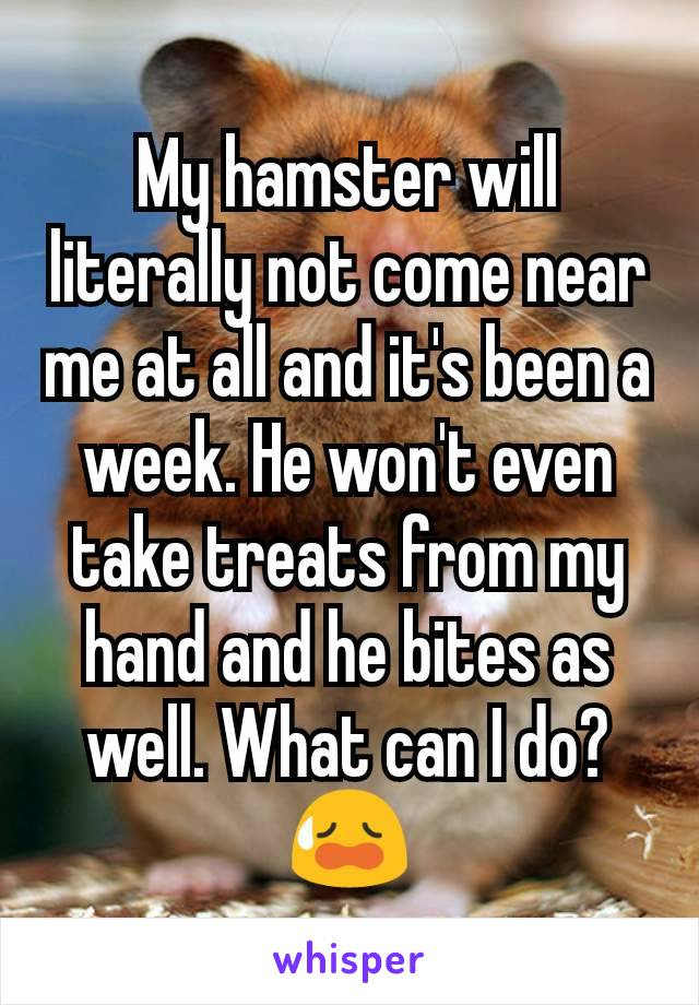 My hamster will literally not come near me at all and it's been a week. He won't even take treats from my hand and he bites as well. What can I do?😥