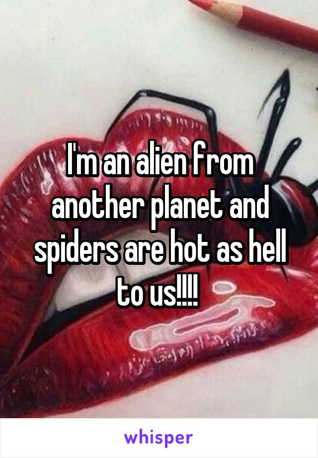 I'm an alien from another planet and spiders are hot as hell to us!!!!