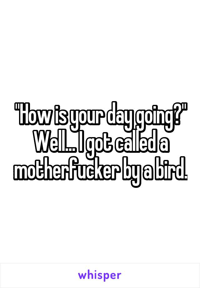 """""""How is your day going?"""" Well... I got called a motherfucker by a bird."""