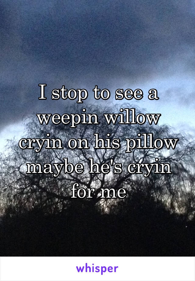 I stop to see a weepin willow cryin on his pillow maybe he's cryin for me