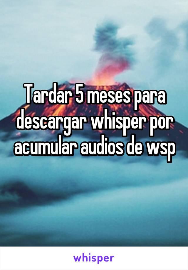 Tardar 5 meses para descargar whisper por acumular audios de wsp
