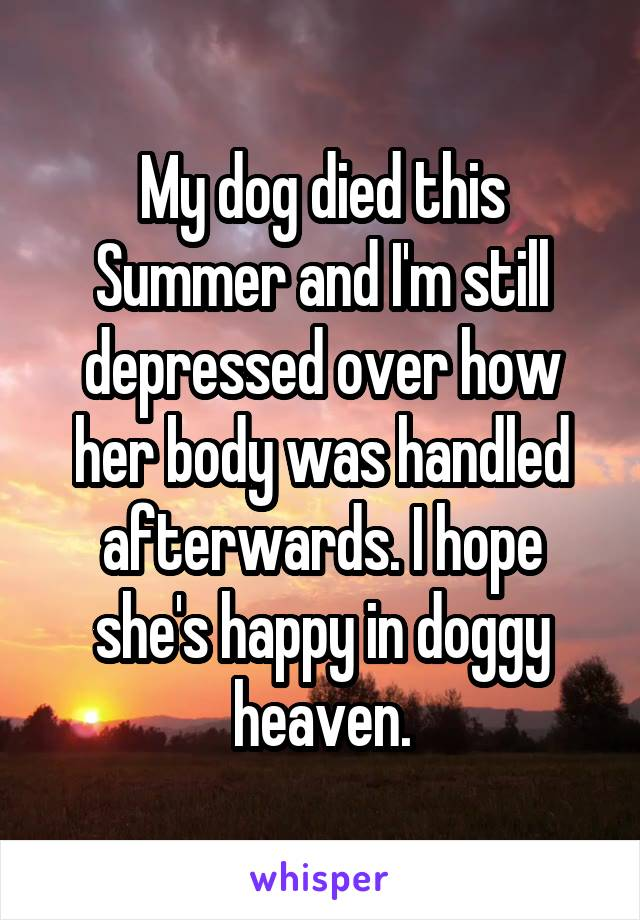 My dog died this Summer and I'm still depressed over how her body was handled afterwards. I hope she's happy in doggy heaven.